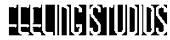 Feeling Studios Logo